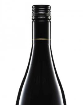 2016 Savaterre Pinot Noir